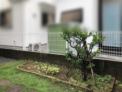 マイティウッド目隠しフェンス 横浜市 施工前 / / / / /